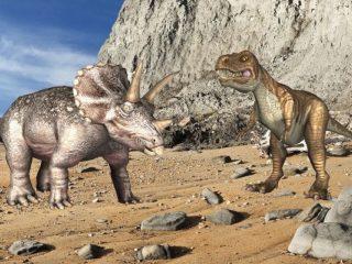 Dinosauri animati e interattivi